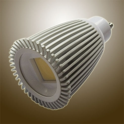 10W COB LED Spot Light