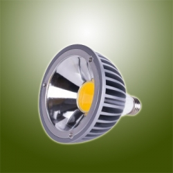 15W high Power LED PAR38 Lamp
